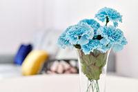 Blue carnation flowers in vase inside of living room closeup