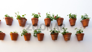 Wall with flower pots
