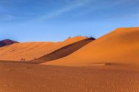 Grandiose paintings of sand dunes
