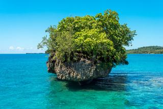 Bewachsene Felsen auf den Togian Inseln