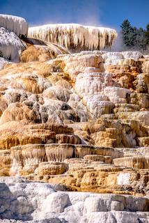 Travertine Terraces, Mammoth Hot Springs, Yellowstone