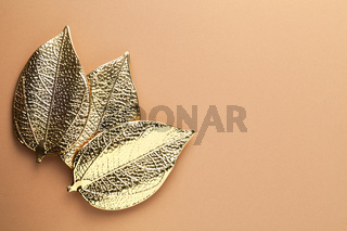Autumn Minimal Concept With Three Gold Leaves