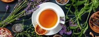 Tea panorama with herbs, flowers and fruit, shot from the top