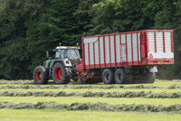 Picking up dried grass for silage with a green tractor and red loader wagon