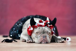 Halloween Französische Bulldogge Hund mit Halloween Teufelshörnern