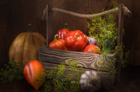 bell peppers and other vegetables on a dark wooden background in a rustic style