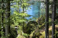 swiss lake Blausee 3