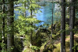 Blausee Kandertal Schweiz 3