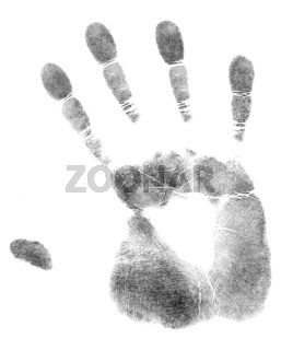 palm of hand print