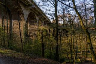 A walk through the Angertal in Ratingen, North Rhine-Westphalia, Germany