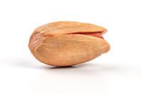 Single turkish red pistachio (Antep) isolated on white background.