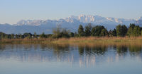 Shore of Lake Pfaffikon and snow covered mountain range.