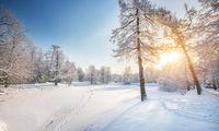Panorama of beautiful winter park