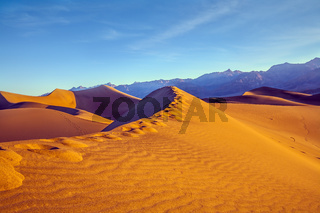 Human footprints on the dune