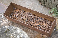 Old metal tray with rusty nails