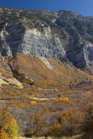 Indian Summer in Provo Canyon
