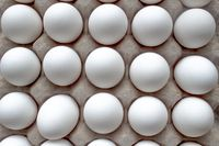 Close up, Top view of a Package Cardboard Egg Holder Egg Tray with eggs