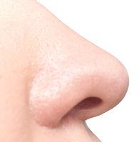 Nose on white