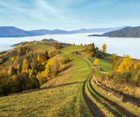 Morning foggy clouds in autumn mountain countryside.  Ukraine, Carpathian Mountains, Transcarpathia. Peaceful picturesque traveling, seasonal, nature and countryside beauty concept scene.