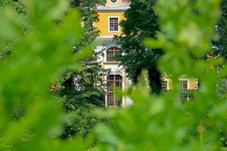 Blick durch Blattgrün auf das Barockschloss Neschwitz