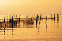 Fishing nets with birds a beautiful morning at the sea