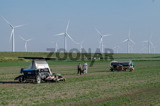 Eastern European Seasonal Workers at the farm land tulip fields,migrant workers from poland and bulgaria at the tulip flower fields,Eastarn Europe Season Workers. Netherlands Flevoland May 2017