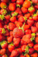Whole ripe red strawberry.