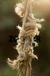 ripped rope