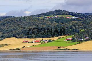 Landschaft mit Wäldern, Feldern und Wiesen am Trondheimfjord in Norwegen