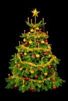 Gorgeous Christmas tree on black