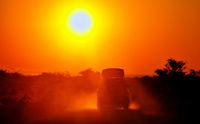 On Safari - car is driving in the sunrise, Etosha National Park, Namibia