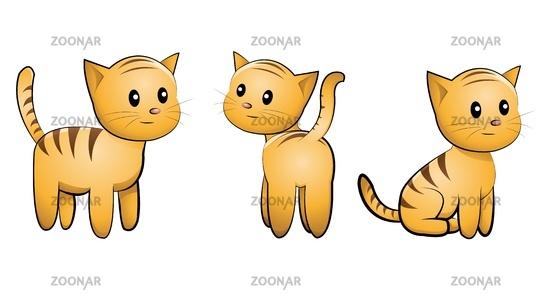 kitten set