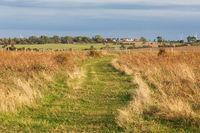 Extensive Weide mit Wanderweg bei Heiligenhafen an der Ostsee in Schleswig-Holstein