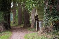 Landscape 001. Windebyer Noor. Germany