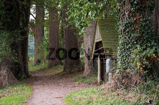 Landschaft 001. Windebyer Noor. Deutschland