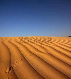 footprint on sand dune in desert