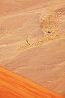 Sand desert in Namib