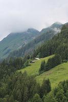 Green landscape in the Swiss Alps on a early summer day. Rural scene in Brienz.