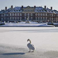 Nordkirchen Castle in winter with a hoecker swan on the ice, Nordkirchen, Germany, Europe