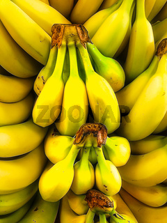 Bunches of Bananas