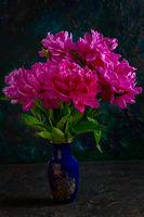 Bouquet of pink peonies.