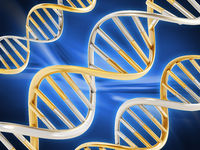 Gold and silver colored dna helix on blue surface. 3D illustration