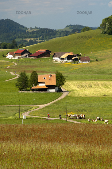 Remote farm houses in the Jura Mountains