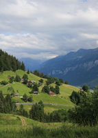 Green meadows and houses on the Planalp, summer settlement above Brienz.