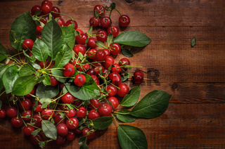 ripe berry on a dark wooden background in a rustic style