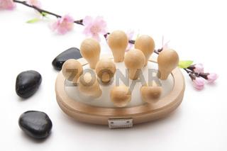 Massagebuerste mit Steine
