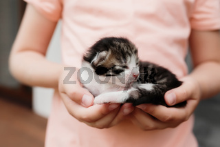 Little girl holding a little kitten with closed eyes in her arms