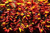 red yellow chili pepper bundle
