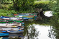 Rowing boats in front of arch bridge