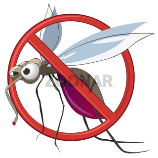 Cartoon STOP Mosquito